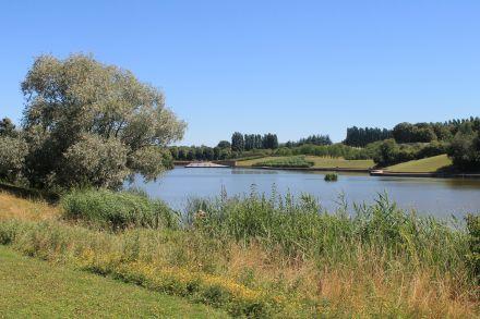 Parc Sausset, étang de Savigny