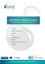 Rapport d'activité de la CLE 2013
